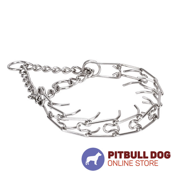 Rust proof stainless steel pinch collar for ill behaved pets