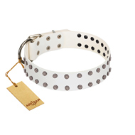 """White Night"" FDT Artisan White Leather Pitbull Collar with Vinatge Silver-like Studs"