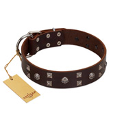"""Brown Shadow"" Designer Handmade FDT Artisan Brown Leather Pitbull Collar"