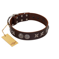 """Silver Sunset"" Designer Handmade FDT Artisan Brown Leather Pitbull Collar"