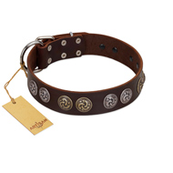 """Treasure Hunter"" FDT Artisan Brown Leather Pitbull Collar with Old-Bronze-like and Silvery Medallions"
