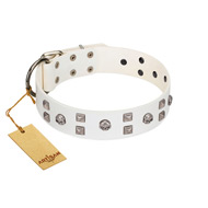"""Rock the Sky"" Durable FDT Artisan White Leather Pitbull Collar with Chrome-plated Decorations"