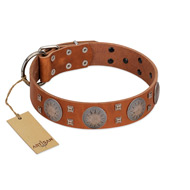 """Sun Rise Noon"" FDT Artisan Tan Leather Pitbull Collar with Unique Design"