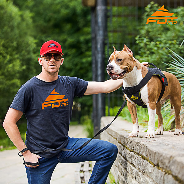 Men T-shirt of High Quality Cotton with FDT Professional Logo for Dog Training