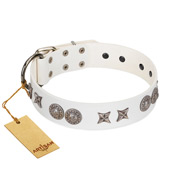 """Seventh Heavens"" FDT Artisan White Leather Pitbull Collar with Chrome-plated Stars and Engraved Brooches"