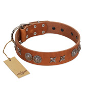 """Splendid Armor"" Premium Quality FDT Artisan Tan Designer Pitbull Collar with Shields and Stars"