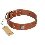 """Lucky Star"" FDT Artisan Tan Leather Pitbull Collar with Silver-Like Embellishments"