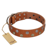 """Ancient Symbol"" Trendy FDT Artisan Tan Leather Pitbull Collar with Silver- and Gold-Like Studs"