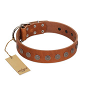 """Lucky Star"" Handmade FDT Artisan Designer Tan Leather Pitbull Collar with Round Plates"