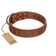 """Silver Century"" Fashionable FDT Artisan Tan Leather Pitbull Collar with Silver-Like Plates"