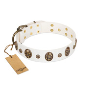 """Magic Bullet"" FDT Artisan White Leather Pitbull Collar with Studs and Skulls"
