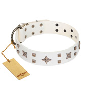 """Starry Heaven"" Designer Handcrafted FDT Artisan White Leather Pitbull Collar with Stars and Studs"