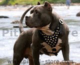 Pitbull Dog Harnesses,leather dog harness