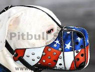 best leather dog muzzle for American pitbull