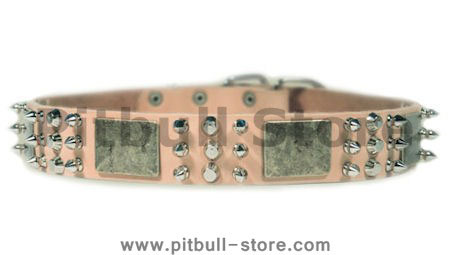 Tan Spiked Dog Collar for Pitbull