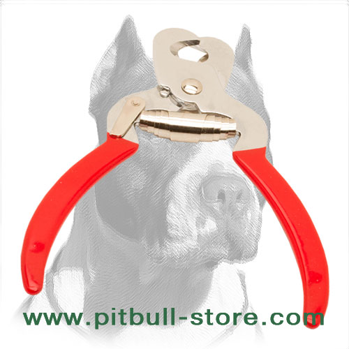 Dog trimmer made of stainless steel