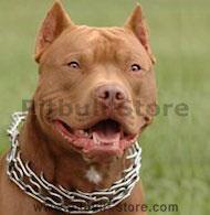Pitbull Prong dog collar- pinch collar - training dog collar