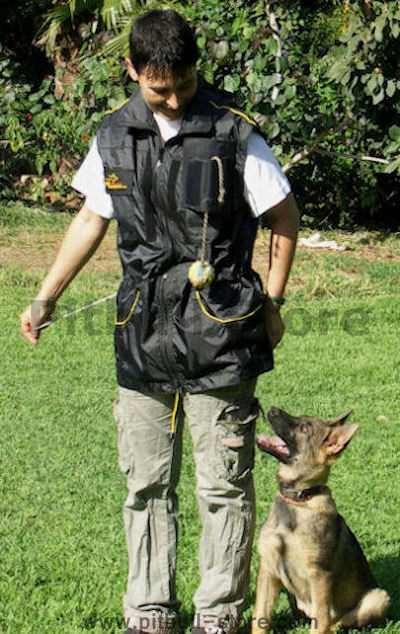 TRAINERS VEST DOG