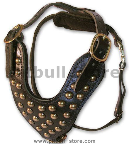handmade leather dog harness for pitbulls
