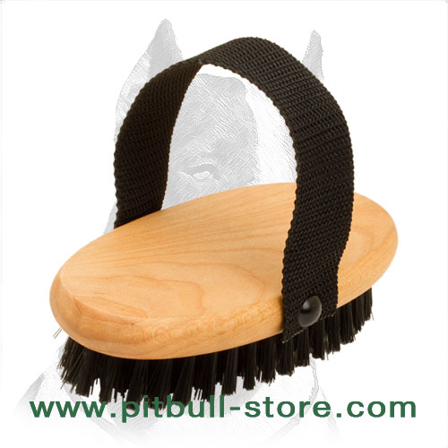 Convenient dog brush with nylon bristle