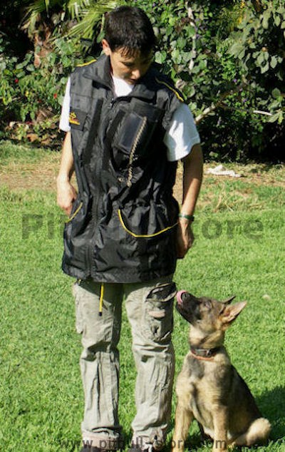 training vest dog