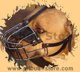 Wire basket dog muzzle,best dog muzzle