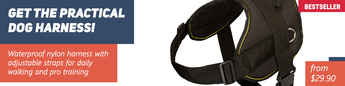 Multifunctional Nylon Dog Harness for Your Pitbull