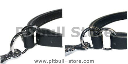 Adjustable Leather Slip Collar with solid NICKEL hardware for Pitbull