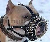 spiked dog equipments, spiked dog collar,spiked dog harness, spiked dog muzzles