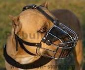 Pitbull wire basket dog muzzle